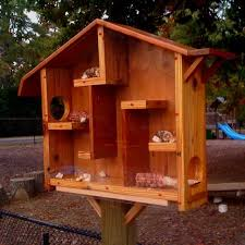 adorable squirrel houses plans 9 best images on feeder with