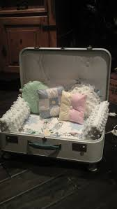 Old Suitcases Best 25 Suitcase Dog Beds Ideas On Pinterest Doggie Beds