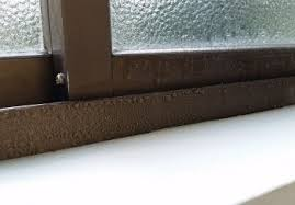 Quick Tip   Create Realistic Condensation on Glass with Maya Paint     Homebuilding   Renovating