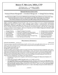 Sample Resume For Accounting Manager Financial Manager Resume Example