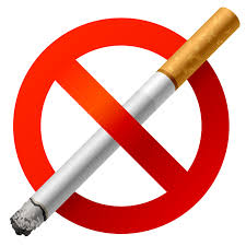 essay smoking smoking kills essay smoking kills gcse english  sample essay on should smoking be banned in public places