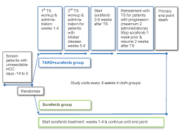 clinical trial schema for the therasphere in the treatment of patients with unresectable hepatocellular carcinoma stop hcc study