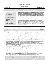 Sample Information Security Resume 60 Up to Date Information Security Analyst Resume Professional 14