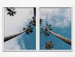 palm tree sky palm tree art palm tree wall art palm tree print on palm tree wall art set with palm tree sky palm tree art palm tree wall art palm tree print