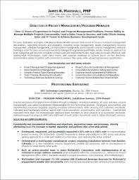 Sample Personal Resume Fascinating Resume Personal Statement Examples Management Combined With Personal