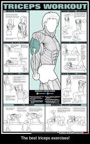 healthy lifestyle goals tricep workout concept art bonetech3d steunk fashion sci fi goals