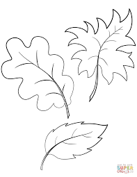 Coloring Pages Leave Coloring Pages Fall Autumn Leaves Page
