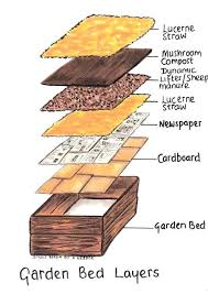 garden beds soil layering your raised garden bed for maximum ivity raised bed vegetable soil mixture