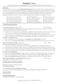 Professional Profile In Resumes Professional Profile Resume Examples For Career Lily Spacesheep Co