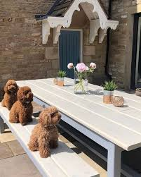 how to protect outdoor wood furniture