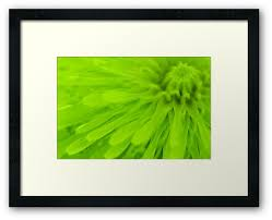 bright lime green wall art by natalie kinnear on lime green wall art prints with bright lime green wall art framed prints by natalie kinnear redbubble