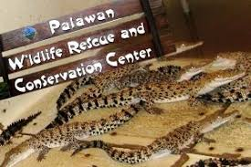 Image result for Crocodile Farm and Nature Park
