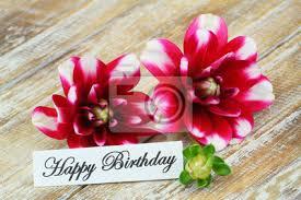 Le gif con auguri di buon compleanno, con fiori per una ragazza. Scheda Di Buon Compleanno Con Fiori Di Dalia Carta Da Parati Carte Da Parati Dalia Beatiful Buon Compleanno Myloview It