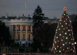 Image result for white Xmas in the white house