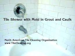 bathtub mold removal shower tile mold removal clean tile shower how to clean shower tile best bathtub mold removal how