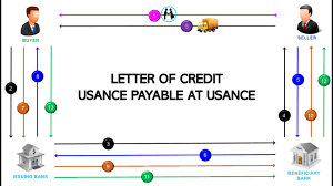 Gibson Lie Usance Payable At Usance Letter Of Credit