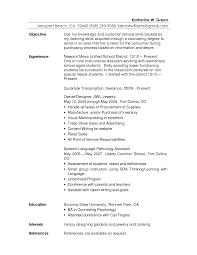 Skills For Resume Customer Service Bongdaao Com