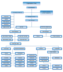 El Nemr General Contracting Group Organization Chart
