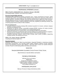 Examples Of Professional Summary On A Resume Executive