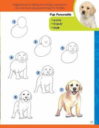 lab dog drawing easy. Exellent Dog Learn To Draw A Labrador Puppy Intended Lab Dog Drawing Easy