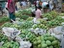 mango business