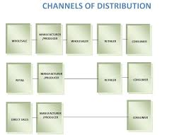 Channel Of Distribution Chart Flow Chart Depicting Basic Flow Of Channels Of Distribution