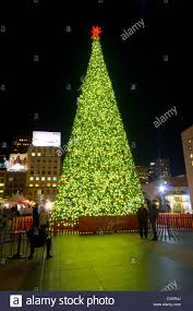 2017 San Francisco Tree Lighting Ceremonies And Other Holiday EventsChristmas Tree In San Francisco