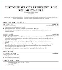 Resume Opening Statement Inspiration Resume Opening Statement Examples Rapidresultsresumesnet