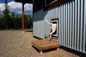 how to build a dog door