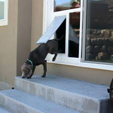 glass dog door sliding glass dog door glass dog door installation