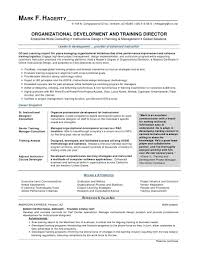 Program Manager Resume Examples Project Manager Resume Examples Mark F Hagerty Od Training