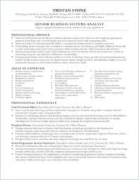 business systems analyst resume system analyst resume sample kantosanpo com