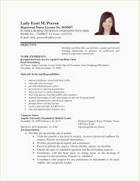 Create Resume For Job Sample Documents