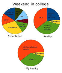 Academics And Partying Chart Every Weekend Memes College Humor Funny Pie Charts