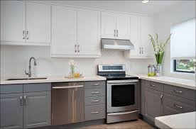 Small Picture Kitchen What Is The Best Paint For Kitchen Cabinets Painting Old