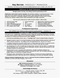 Operations Manager Resume Pdf Professional Template Project Manager