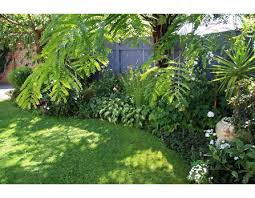 Small Picture Perfect Tropical Garden Ideas Nz Design Uk For Inspiration