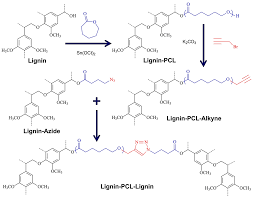 Polymers Free Full Text Lignin Biopolymers In The Age Of