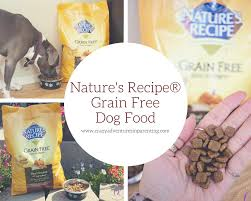 nature s recipe grain free food for dogs