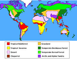 Suitable for years 3 and 4. Tropical Rainforest World Map Page 1 Line 17qq Com