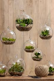 8 indoor gardening ideas