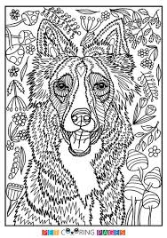 File formats include gif, jpg, pdf, and png. Free Printable Border Collie Coloring Page Available For Download Simple And Detailed Versions For A Dog Coloring Page Horse Coloring Pages Dog Drawing Simple