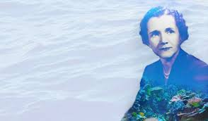 undersea rachel carson s lyrical and revolutionary  rachel carson