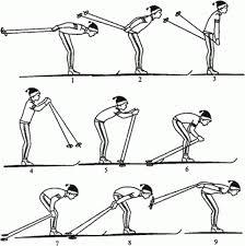 Ознакомление и разучивание техники бесшажного хода