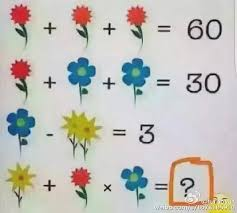 can you solve the flower puzzle dividing the internet