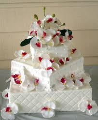 Contemporary Wedding Cake With Modern Magic Cardinal Bridal