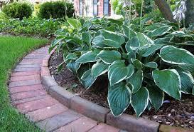 cheap garden edging. Simple And Cheap Garden Edging Ideas For Planters Discount Fountains