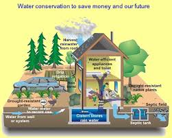 International Water Conservation Is Needed To Secure Life On