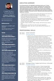 Senior Cv Examples Superb Scrum Master Resume Example Best Sample