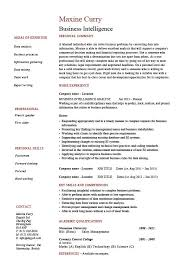 Business Intelligence resume, example, sample, template, job description,  strategy, career history